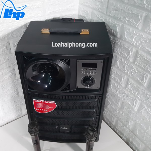 Loa kéo karaoke di động Avlight Dx10-12