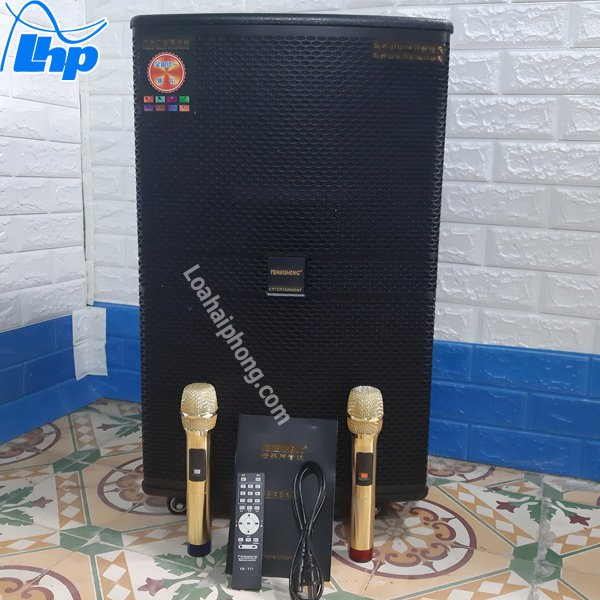 Temeisheng GD15-11 và micro