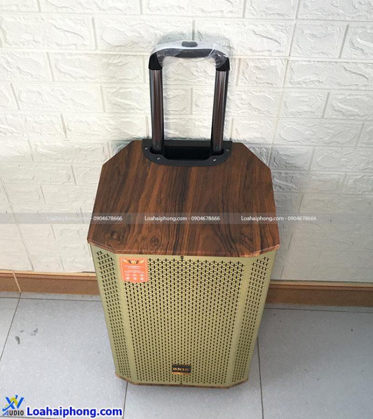 Loa kéo thùng gỗ BNIB 1206-A