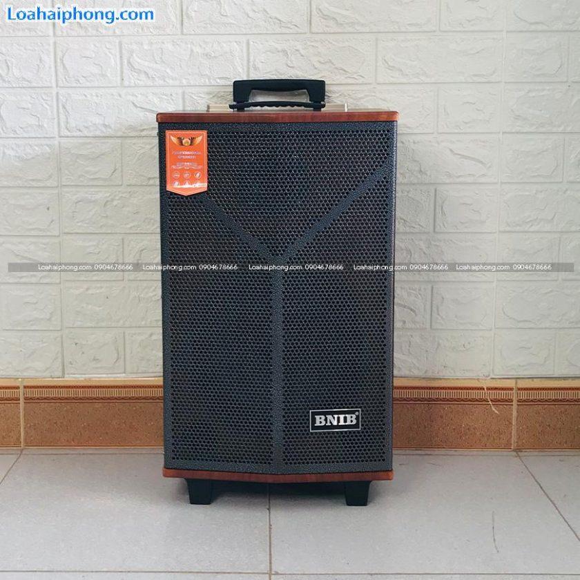 BNIB-1098A bass25 - loa kéo mini hát gia đình phòng nhỏ